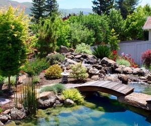 garden and backyard image