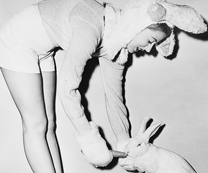 1949, 40's, and bunny image