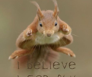 fly and believe image