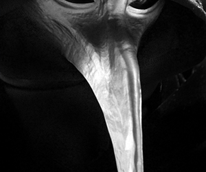 games, bird mask, and scp image
