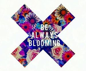 always, flowers, and x image