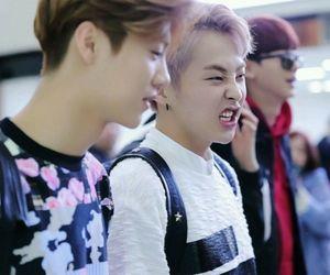 deer, xiao lu, and xiumin image