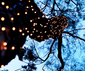 christmas lights, winter, and cute image