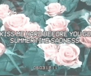 lana del rey, summertime sadness, and roses image