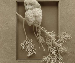 art, owls, and Paper image