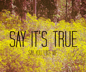 quote, true, and like me image