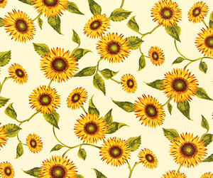 flowers, background, and sunflowers image