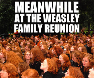 ginger, harry potter, and weasley image