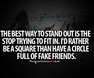 fake, quote, and friends image