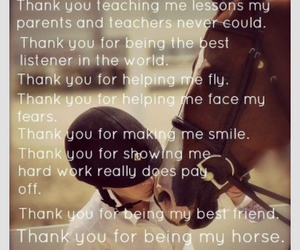 horses, life, and mylife image