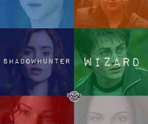 divergent, vampire, and wizard image