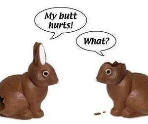 bunny, chocolate, and easter image