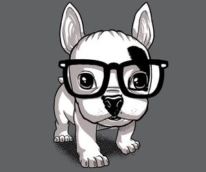 dog, Lola, and black and white image