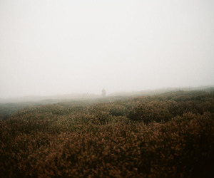 film, nature, and wuthering heights image