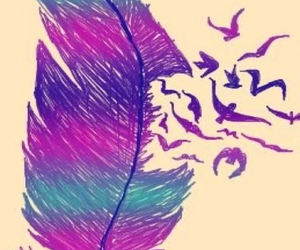 bird, feather, and purple image