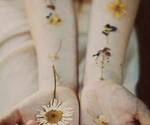 flowers, hands, and vintage image
