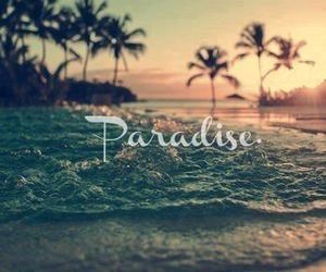 amazing, paradise, and love image