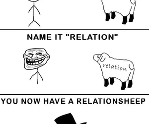 funny, sheep, and Relationship image