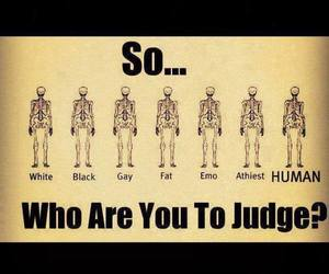 human, judge, and fat image