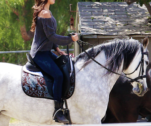 cavalo, ♡, and horse image