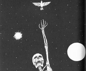 skeleton, stars, and bird image