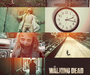 photography, season 1, and the walking dead image