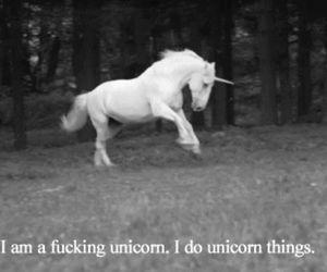 saying and unicorn image