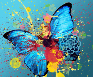 butterfly, art, and blue image