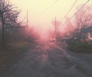 amazing, photography, and silened image