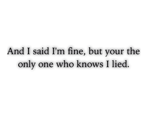 you know, i lied, and said i'm fine image