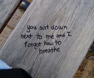 bench, wood, and breathe image
