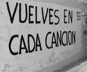 love, song, and frases image