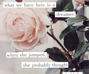 dreamer, quote, and fly image