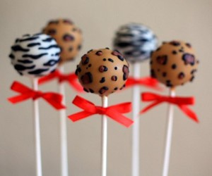 cake pops and zebra image