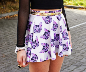 fashion, cat, and skirt image