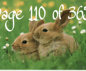 bunnys, easter, and page image