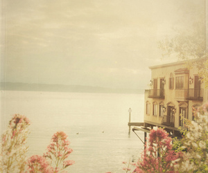 house, flowers, and sea image