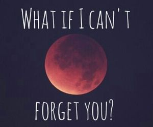 black, forget, and moon image