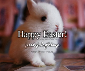 easter, bunny, and cute image