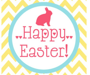 bunny, easter, and happy easter image