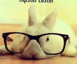 bunny, easter, and hipster image