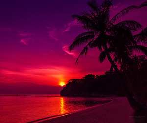sunset, beach, and paradise image