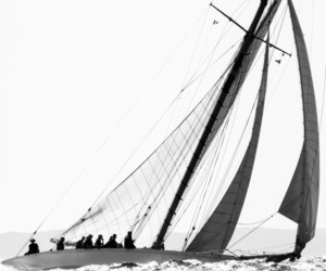black and white, sailing, and boat image