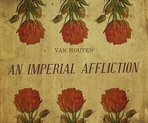 the fault in our stars, john green, and an imperial affliction image