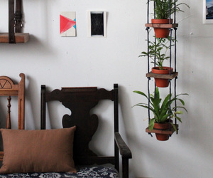 plants and diy image