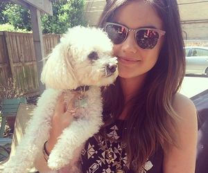lucy hale, dog, and cute image