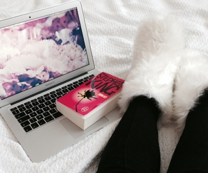 cocooning, flowers, and fluffy image