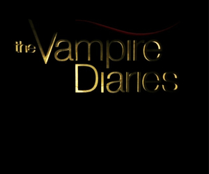 the vampire diaries, stelena, and tvd image