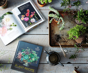 plants, book, and flowers image