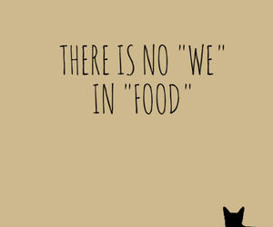 food, cat, and we image